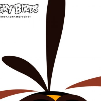 Angry Birds、累計ダウンロード数4億突破!新しい鳥も近日追加予定