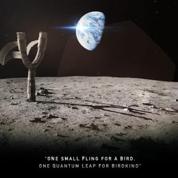 Rovio、3/22に新タイトル「Angry Birds Space」をリリース