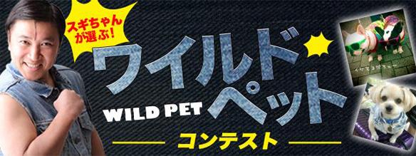 サイバーエージェント、ペット写真共有SNS「パシャっとmyペット」にてスギちゃんを審査員に迎えた「ワイルドペットコンテスト」を開催1