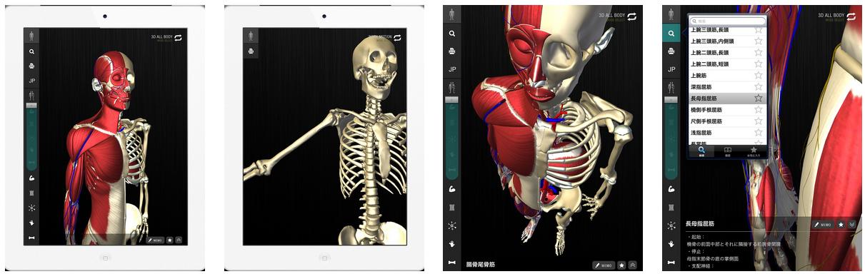 チームラボ、3/4にiPad向け3D人体解剖アプリ「teamLabBody」をリリース