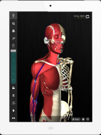 チームラボ、生きた人間の骨格の動き・人体の形態を忠実に再現したiPad向けデジタル教科書「teamLabBody」をリリース1