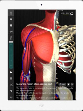 チームラボ、生きた人間の骨格の動き・人体の形態を忠実に再現したiPad向けデジタル教科書「teamLabBody」をリリース3