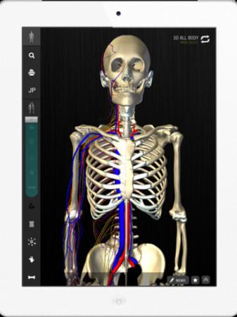 チームラボ、生きた人間の骨格の動き・人体の形態を忠実に再現したiPad向けデジタル教科書「teamLabBody」をリリース2