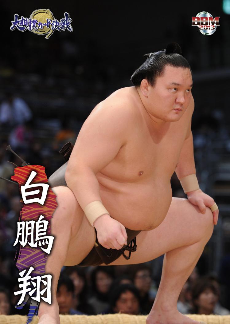 ソーシャルゲーム「大相撲カード決戦」、大相撲五月場所開催に合わせ両国国技館にて限定カードを配布1