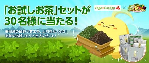 ソーシャル農園シミュレーションゲーム「ハッピーベジフル」、ベジガーデンの「葉っピィ向島園のおためし茶箱」が貰えるキャンペーンを実施