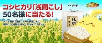 ソーシャル農園シミュレーションゲーム「ハッピーベジフル」、本物のコシヒカリが貰えるプレゼントキャンペーンを実施
