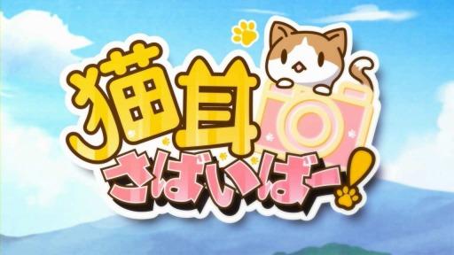 ジープラ、猫擬人化スマホゲーム「猫耳さばいばー!」のAndroid版をリリース1