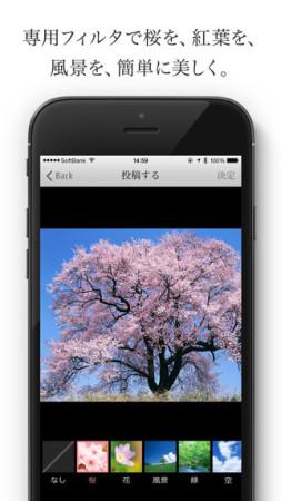 いであ、桜など季節の風景を美しく撮影できるiOSアプリ「Sai-Jiki -彩時記-」をリリース