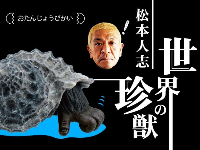 タカラトミーアーツ、AR対応のガチャシリーズ「松本人志 世界の珍獣 第1弾」を発売