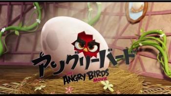 Angry Birdsの3Dアニメ映画「The Angry Birds Movie」の日本公開日が10/1に決定 日本語版予告ムービーも公開