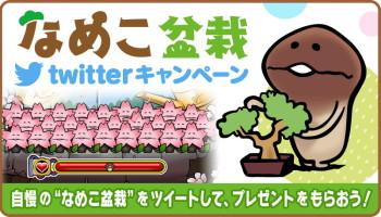 """""""なめこ盆栽""""にチャレンジ! 「なめこ栽培キット HD」と「なめこ栽培キットSeasons HD」にてTwitterキャンペーンを実施"""