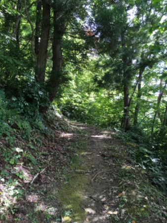 【特集コラム】ポケストップ数全国最下位の秋田県で、奇跡的に近所の公園がポケモン天国だった