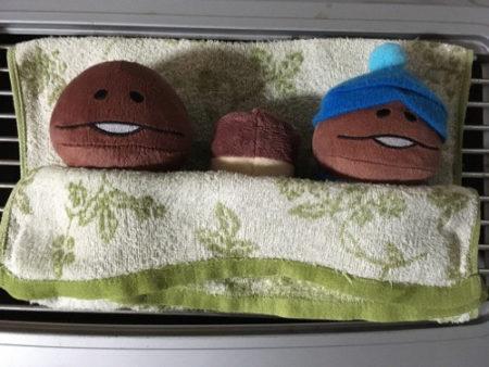 【使用レポート】上海問屋の旅行用便利ガジェット「どこでも洗濯機」を使ってみた