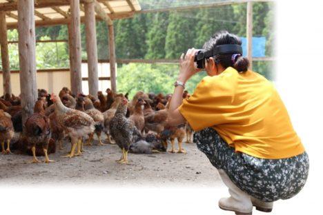 居酒屋の「塚田農場」、アルバイト向け研修プログラムにVRを活用
