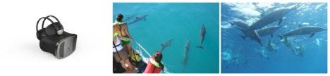ドルフィン&ユー、「HAWAI'I EXPO 2017」に出展しイルカと泳ぐVR体験や豪華賞品が当たるキャンペーンを実施