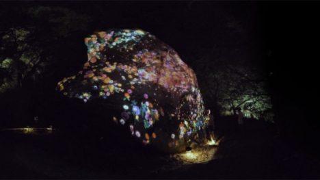 360Channel、チームラボのアートイベント「資生堂 presents チームラボ かみさまがすまう森のアート展」のVR映像を配信