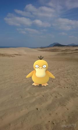 11/24-26に鳥取砂丘にて「Pokémon GO Safari Zone in 鳥取砂丘」開催