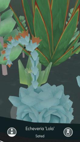 【やってみた】多肉植物の寄せ植えを淡々と観察する育成シミュレーションゲーム(?)「Viridi」