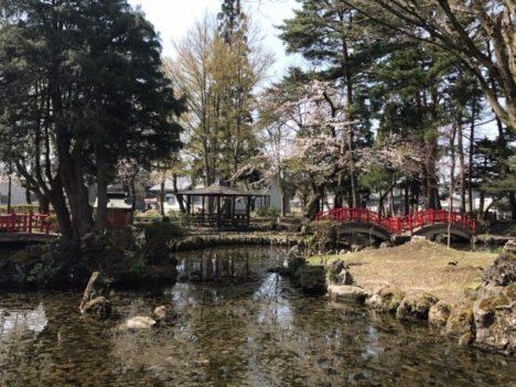 地域イベントとコラボした秋田県横手市のコスプレイベント「ひらかコスプレイベント×浅舞公園あやめまつり」今年も6/23に開催決定