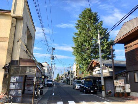 【レポート】サンドボックスゲーム「マインクラフト」で歴史的町並みを再現する試み「マイ蔵の日~マイ蔵史めぐり~」