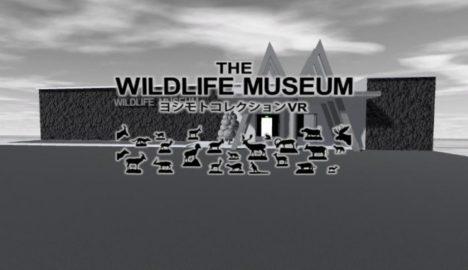 国立科学博物館、貴重な剥製コレクションを展示したVR博物館を公開